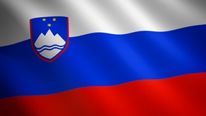 flag_si_300