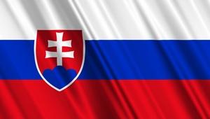 flag_sk_300